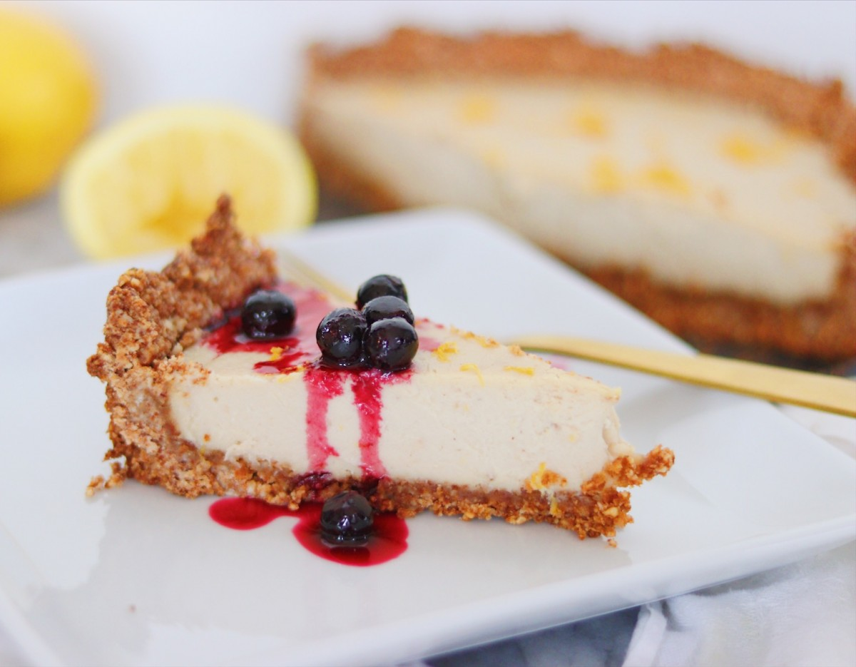 Close cheesecake shot with blueberry topping